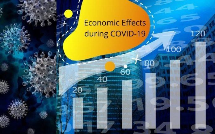 Economic Effects during COVID-19